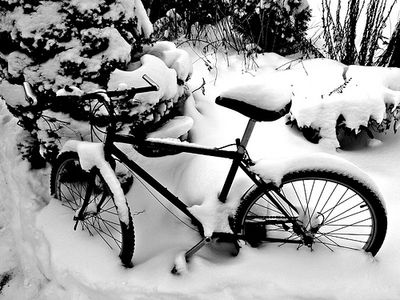 Bicyclesnow1