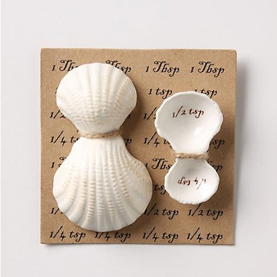 Shell-measuring-spoons-xl-86458214