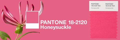 Pantone-honeysuckle-pink